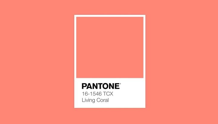 pantone coral.jpg